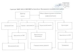 Структура СДЮСШОР